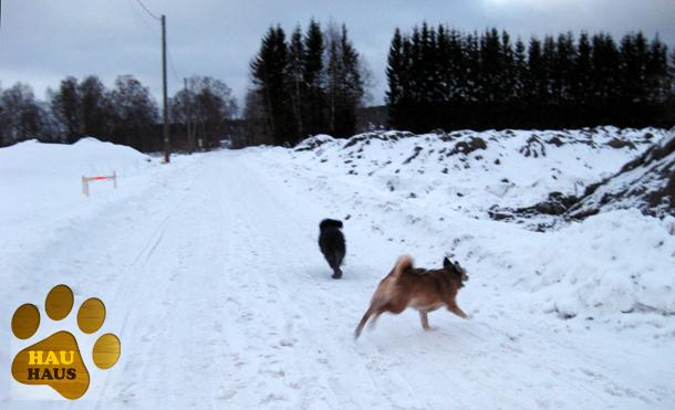 Äijälänrannassa 2/2012