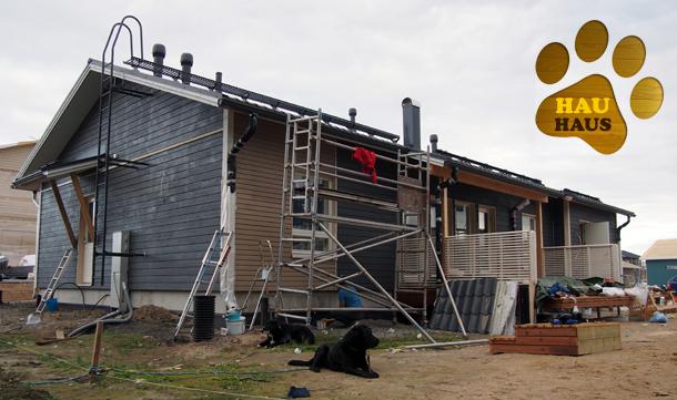 talo maalattuna