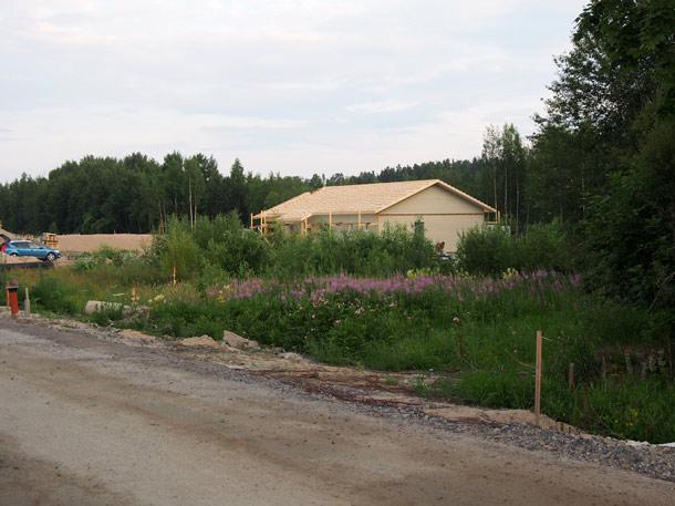 Talo vielä varsin metsäisissä maisemissa naapureiden rakentamisen antaessa odottaa itseään
